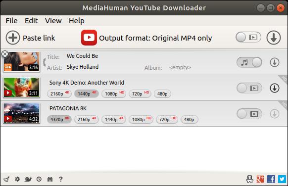 MediaHuman YouTube Downloader 3.9.9.5 Portable